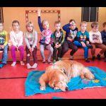 20171002_kinderhunde